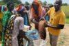 Franco Majok unterstützt eigenhändig die CSI-Nahrungsmittelverteilung, durch die viele Menschenleben gerettet werden konnten (csi)